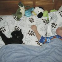 30 Cutest Pets & Their People