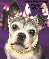 Normal Dog Aging or Doggy Dementia?  By Ashlee Verba